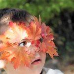 Как сделать маску из листьев