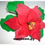Цветок пуансетия своими руками